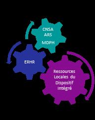 Engrenages montrant les liens entre CNSA-ARS-MDPH et l'ERHR et les ressources locales du dispositif intégré
